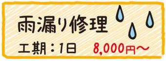 雨漏り修理 工期1日 8000円〜